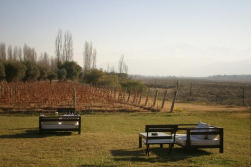 Vista dos vinhedos da Achaval Ferrer, em sua sede, em Luján de Cuyo, e do nosso cantinho de degustação.