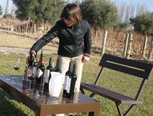 Verônica é quem apresenta os vinhos (em espanhol) e acompanha a degustação